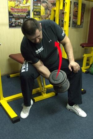 IGOR MAZURENKO - TRAINING FOR THE BEGINNERS # 2 # Armwrestling