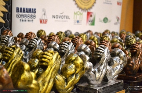 National Championship of Hungary: review # Armwrestling # Armpower.net